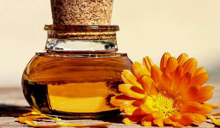 Календула трава лечебные свойства и противопоказания