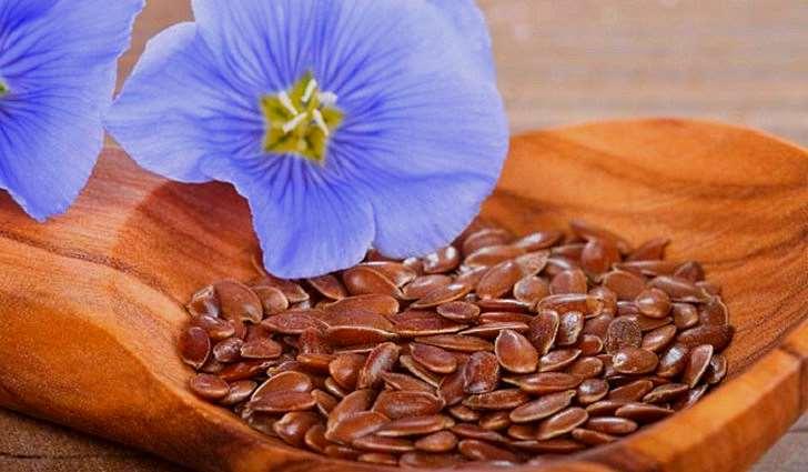 Льняные семена усиливают защитные силы организма