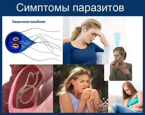 Признаки наличия глистов у человека