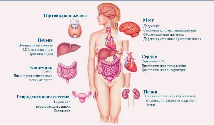 Какие основные симптомы могут указать на наличие гипотиреоза?