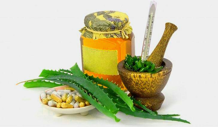Фармакологические свойства и применение алоэ древовидного