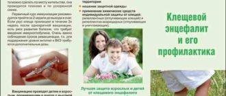 Клещевой энцефалит: клиника, профилактика, лечение