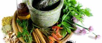Применение лекарственных растений в медицине