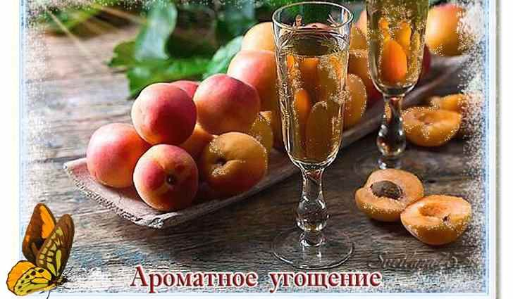 Рецепты с абрикосами