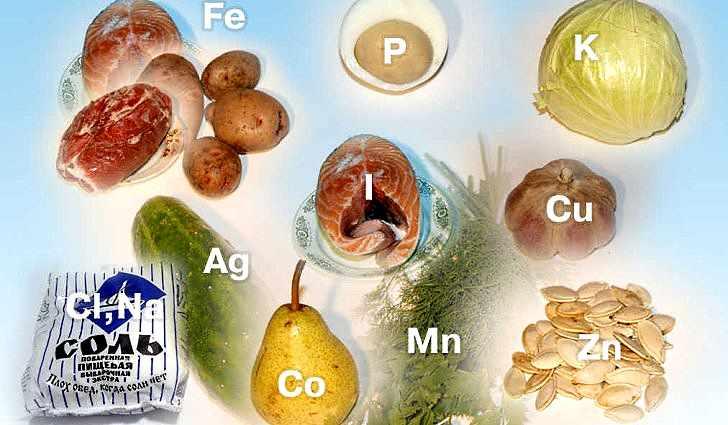 Какие вещества нужны организму
