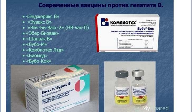 Профилактика заражения гепатитами