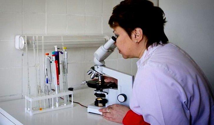 Диагностика ревматической полимиалгии - анализ крови