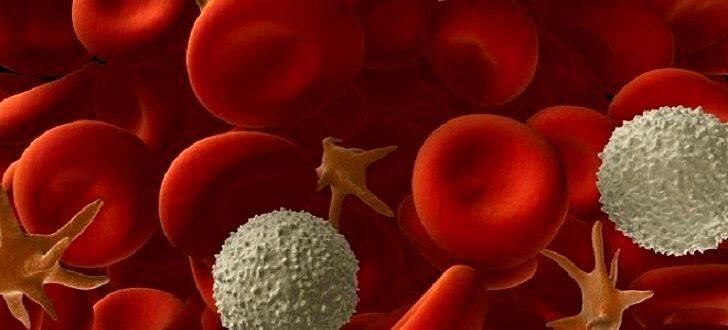Норма тромбоцитов в кровит человека