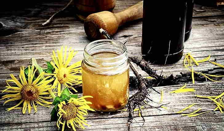Череда, девясил и мед = рецепт лечения жкт