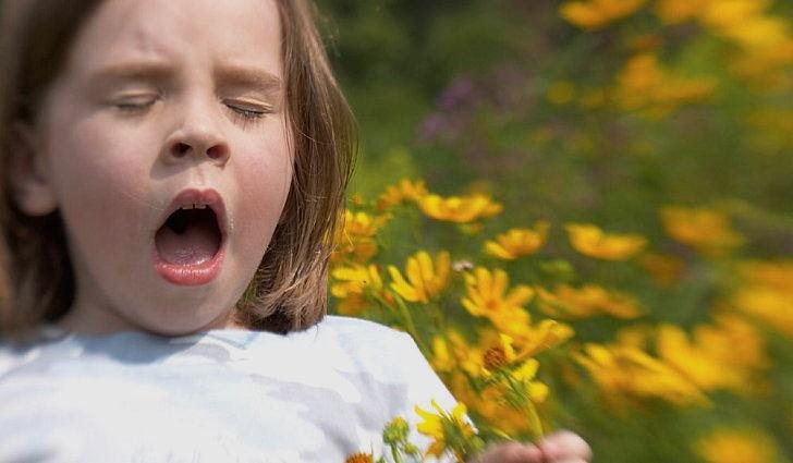 Аллергия у ребенка на цветочные пыльца