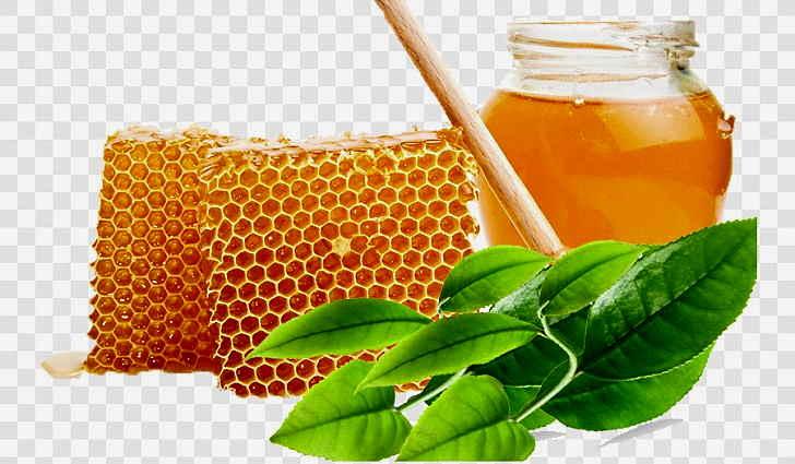 Подорожник с медом очищает бронхи