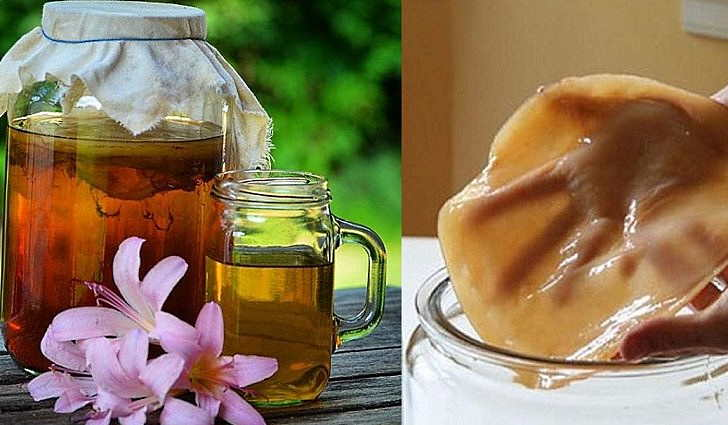 Чайный гриб от перхоти