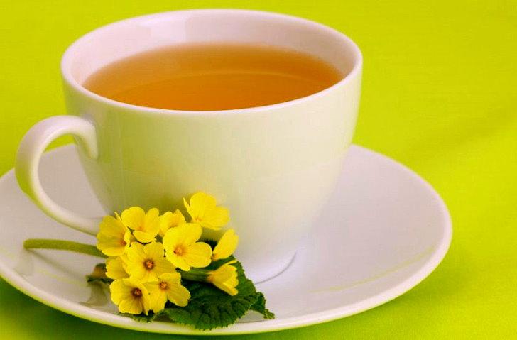 Чай от кашля с примулой весенней
