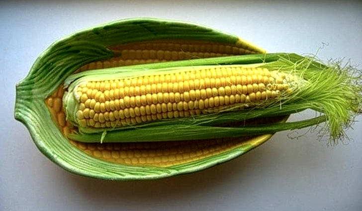 Кукурузные рыльца облегчают работу печени при гепатите